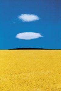 Franco Fontana - Full Color
