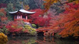 8_i-colori-dell-autunno-in-giappone