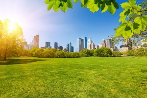 Estate-ny-new-york-central-park-Great-Lawn-soleggiato-sole-skyline-verde-1024x682
