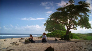 lost_tv_Mokuleia Beach