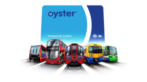 oyster-multiple-transport_640