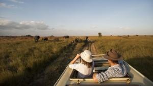 Safari nel Parco Nazionale del Serengeti
