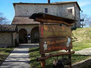 museo del castagno zocca