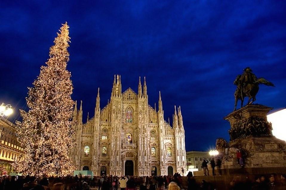 L'albero ecologico del Duomo di Milano