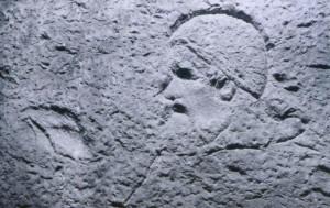 Papa (particolare Fontana di Trevi)