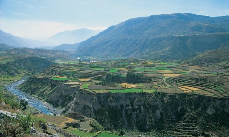 Canyon di Colca (Arequipa)