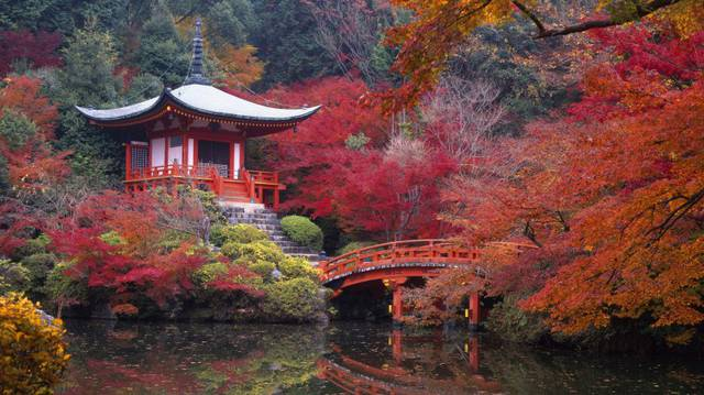 Giardini giapponesi (Kyoto)