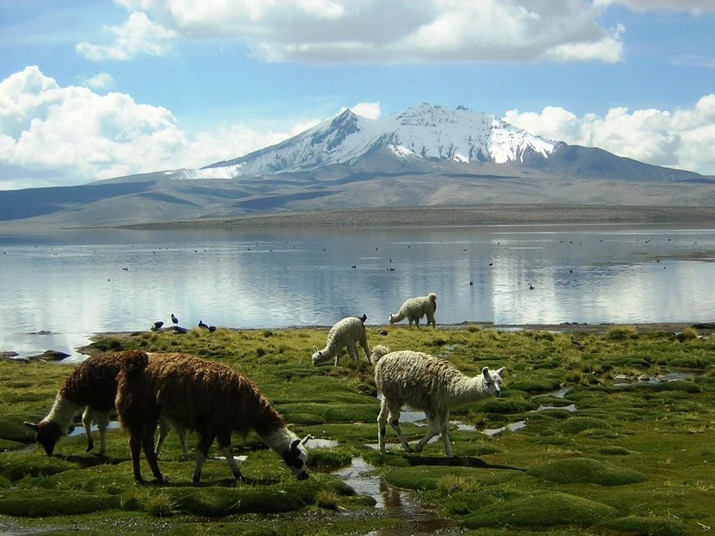 Lago Chungarà (Cile)