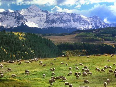 Pianure (Colorado)