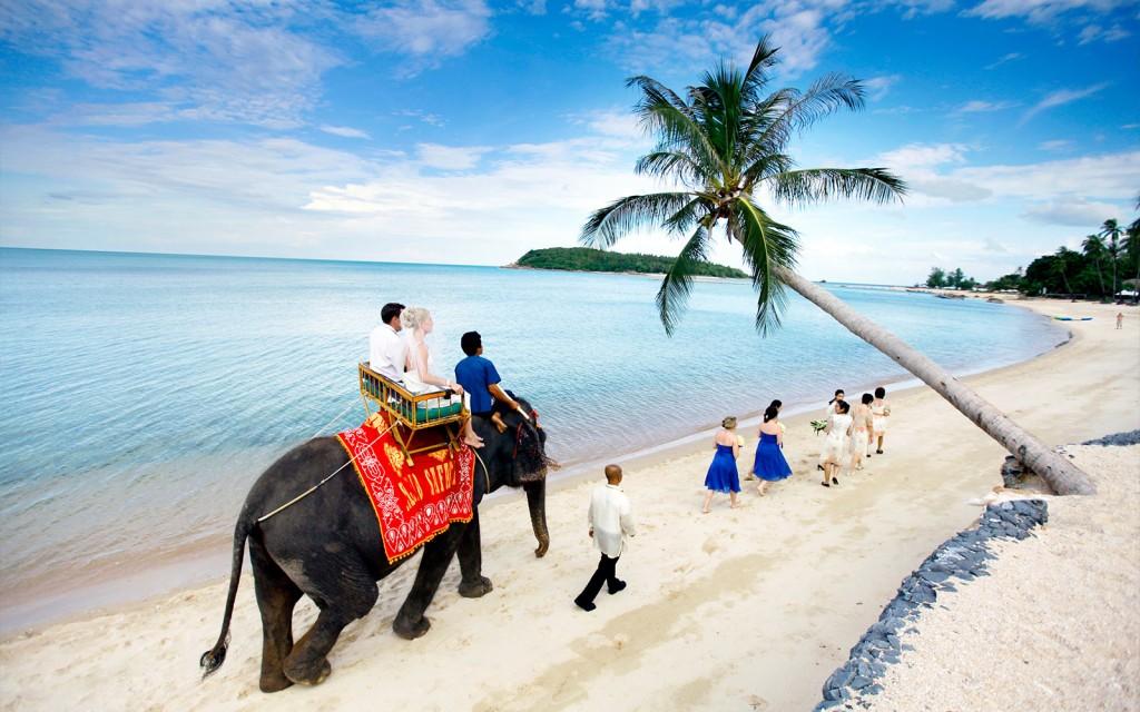 Matrimonio In Spiaggia Thailandia : Matrimoni dove sposarsi ai tropici tgtourism