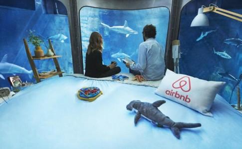 Aibnb stanza squali