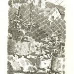 Giorgio Morandi, Piante di gerani e rete di filo di ferro, acquaforte, 1928, (Tip. 30959)