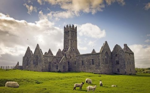 Ross Errilly Friary, Irlanda