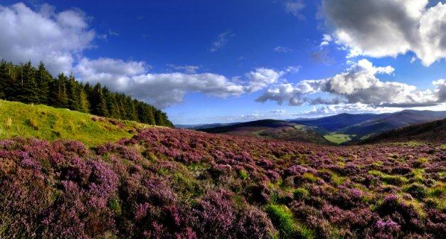 Wiclow National Park, Irlanda
