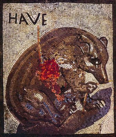 Mosaico della Casa dell'Orso Ferito, Riapertura Pompei