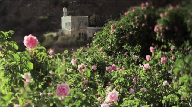 Roseti Oman