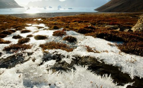 Permafrost della Siberia