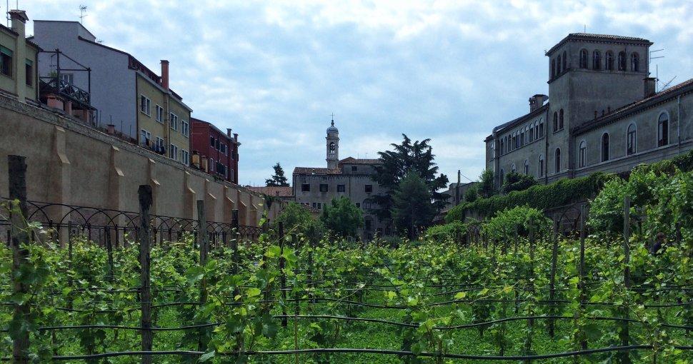 giardini chiesa degli scalzi padri carmelitani venezia