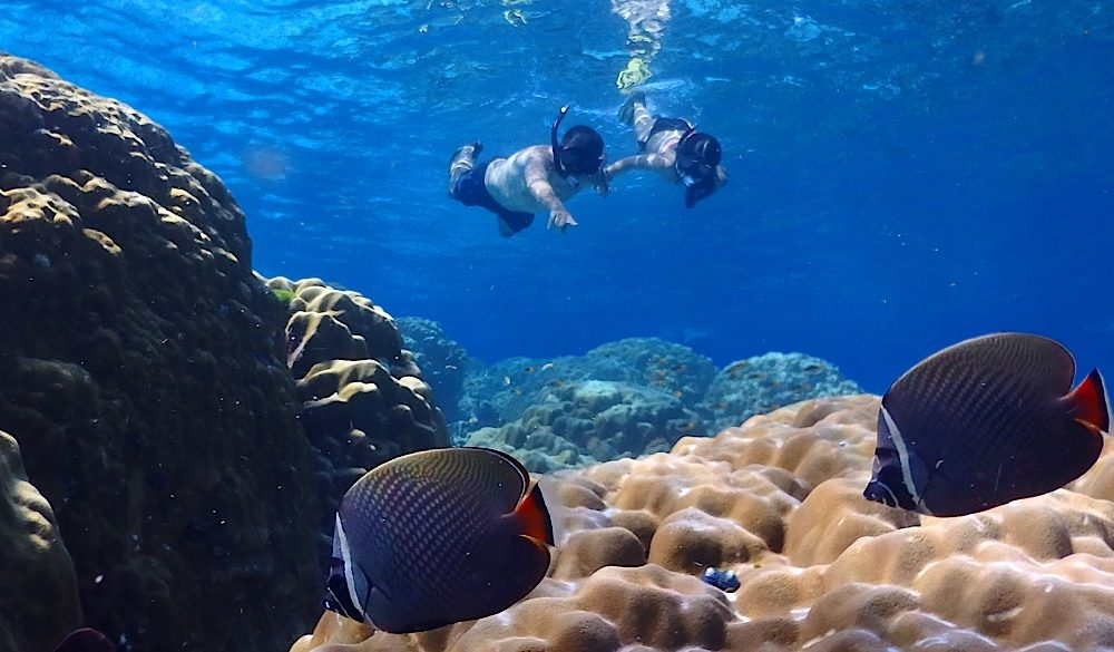 Barriera corallina di Pimalai