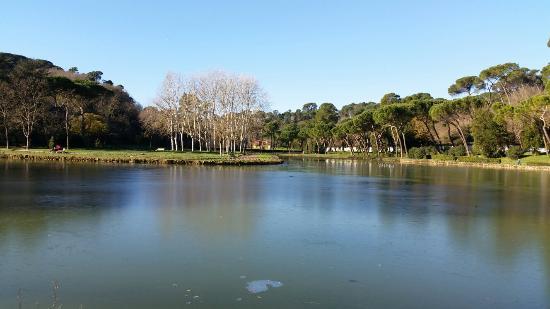 Lago Villa Ada (itinerario parchi di Roma)