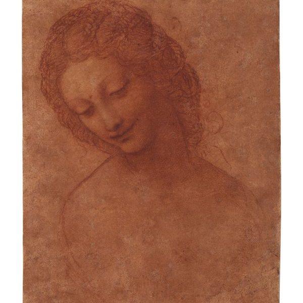 Leonardo da Vinci (e collaboratore?), Studio per la testa di Leda, 1505 circa Milano, Castello Sforzesco, Civico Gabinetto dei Disegni