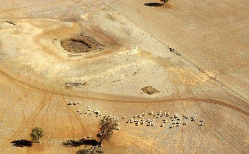 Esempio di ecosistemi a rischio in Australia a causa del riscaldamento globale