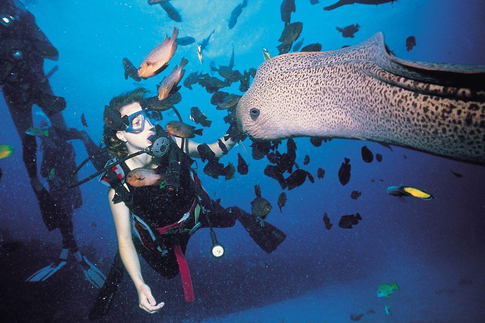 Immersione in Mauritius