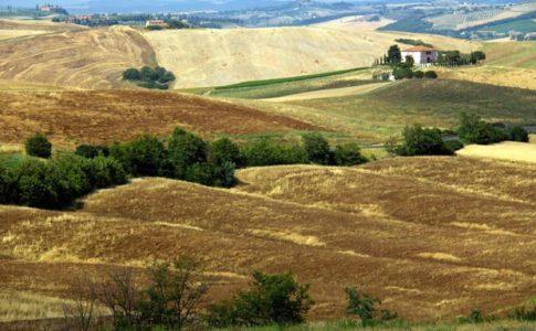 Agriturismo, dati presentati in AgrieTour