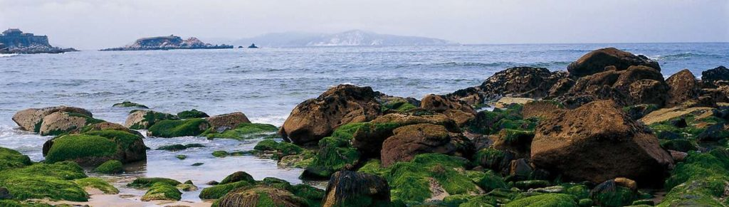 Galizia, Spagna