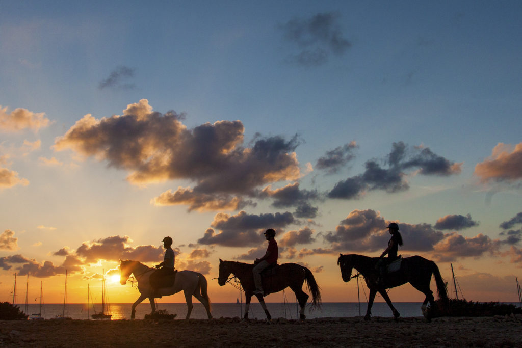 A cavallo per Formentera