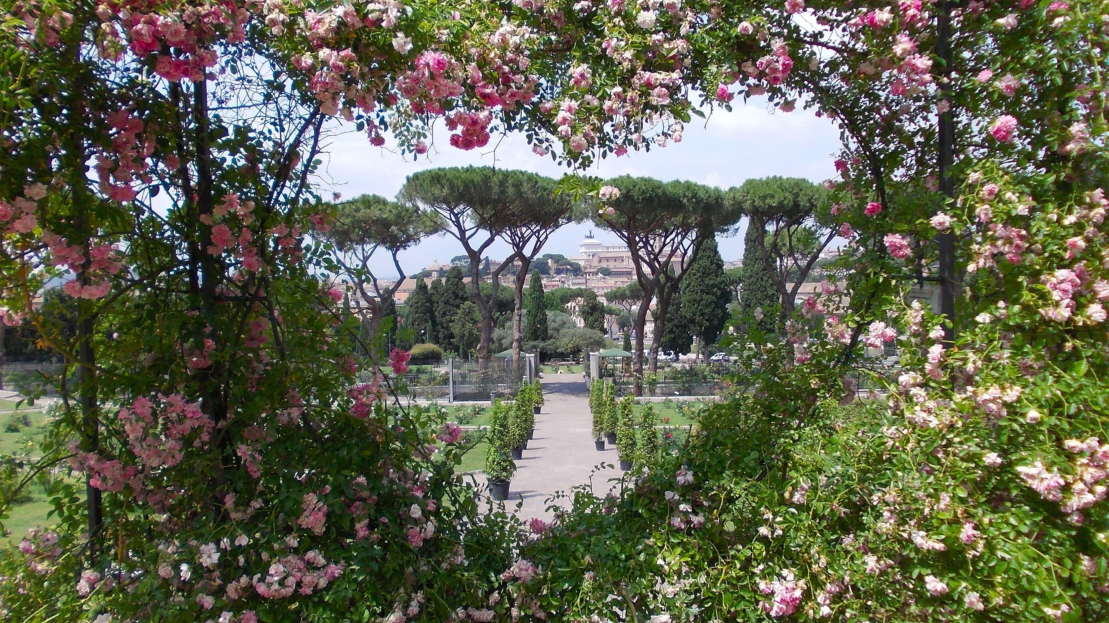 Basamento aventino riqualificazione percorso giardini aranci lungotevere - Giardino degli aranci frattamaggiore ...