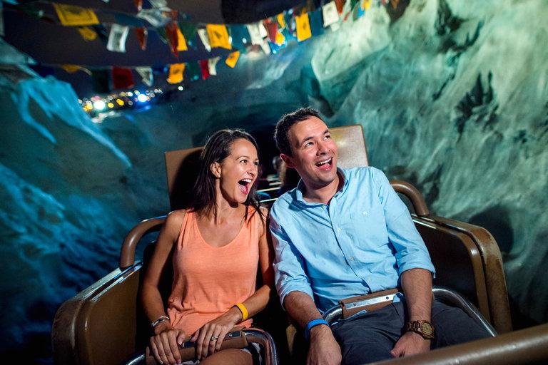 Expedition Everest, in Animal Kingdom, a Walt Disney World