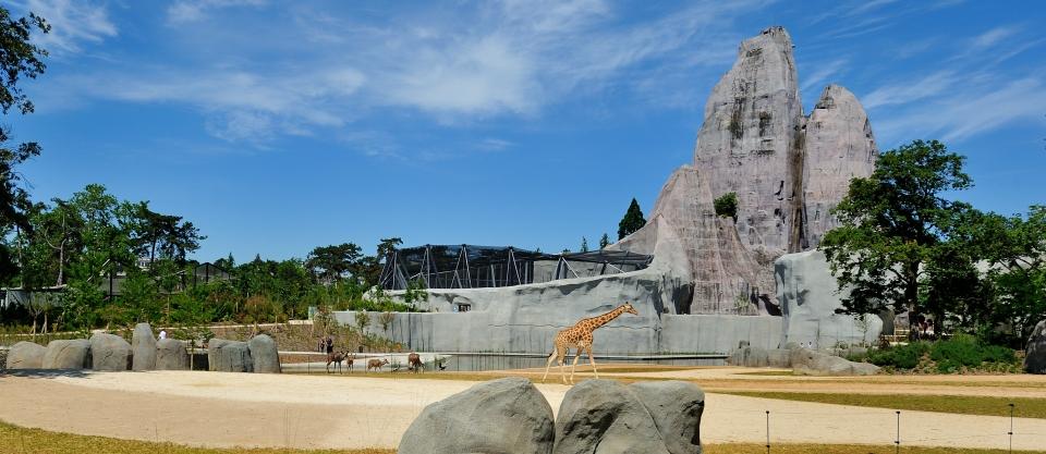 Parco Zoologico di Parigi, Francia