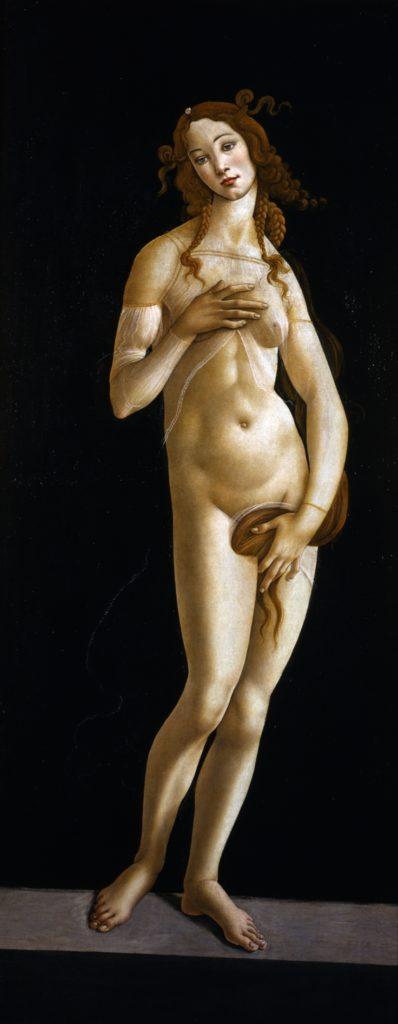 Venere di Torino