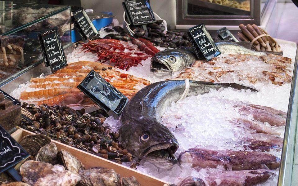 guerra del pesce