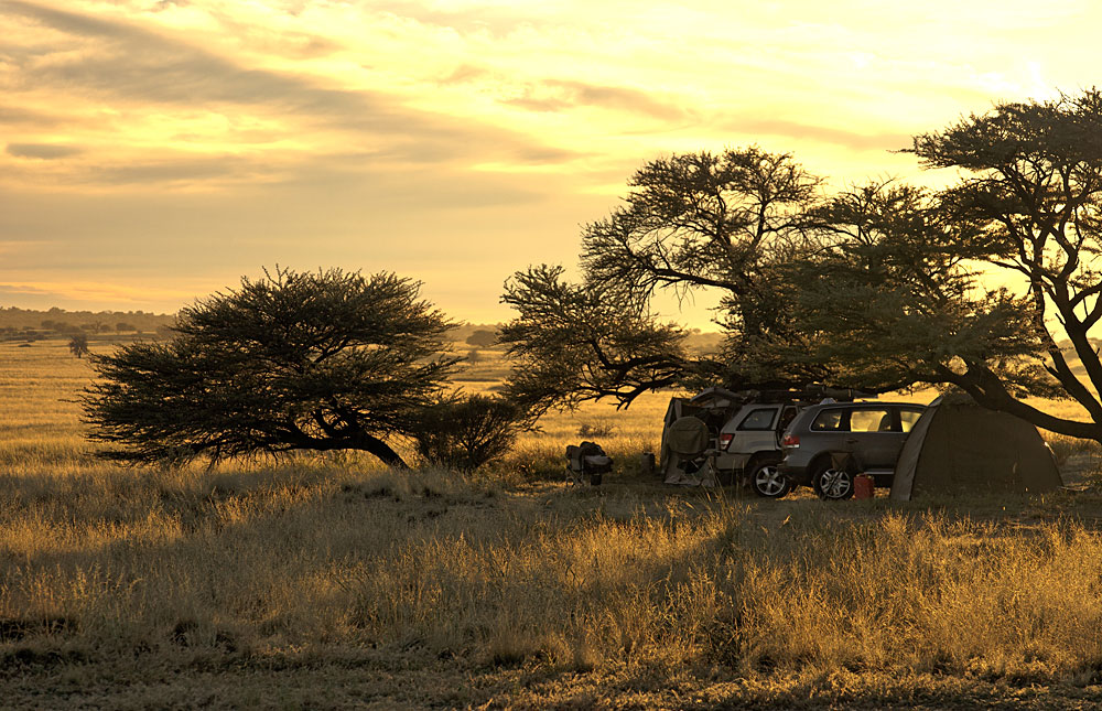Kgalagadi Transfrontier Park, Sudafrica