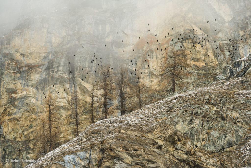 59_∏ Sfefano Unterthiner (Italia)_Spirito delle montagne