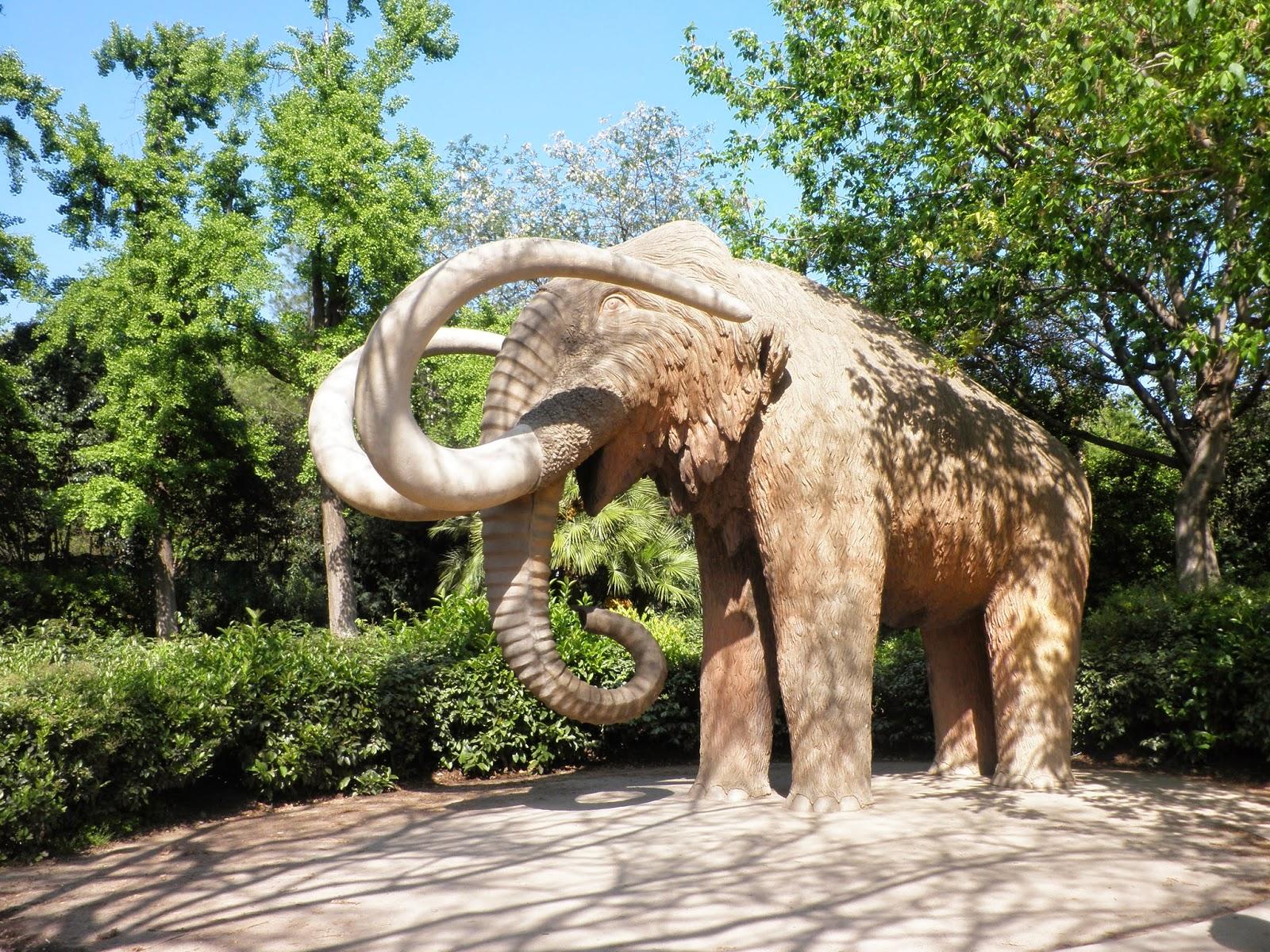 Elefante Parc de la Ciutadella, Barcellona