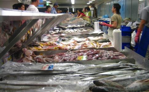 Ittico, nasce il Mercato Telematico dei prodotti per la pesca
