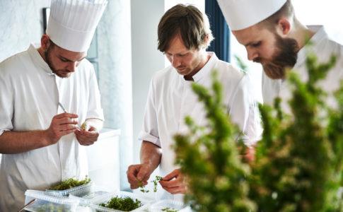 Guida Michelin 2018: record di ristoranti stellati in Danimarca