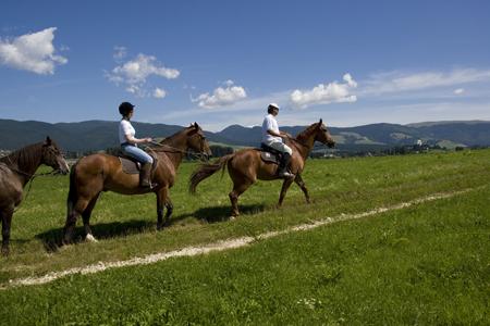 Veneto, in programma sviluppo del turismo equestre e delle ippovie