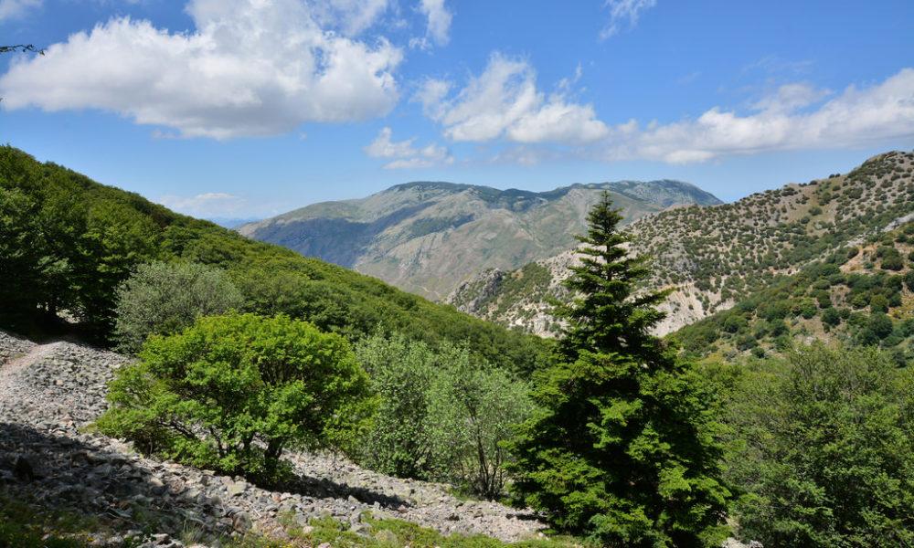Parco delle Madonie, un antipasto dell'estate nel cuore della Sicilia