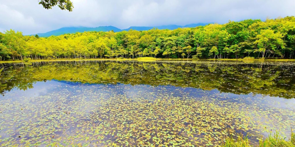 Parco di Shiretoko, Hokkaido