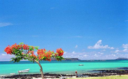 Cosa fare a Mauritius: viaggio nella terra che ispirò Conrad