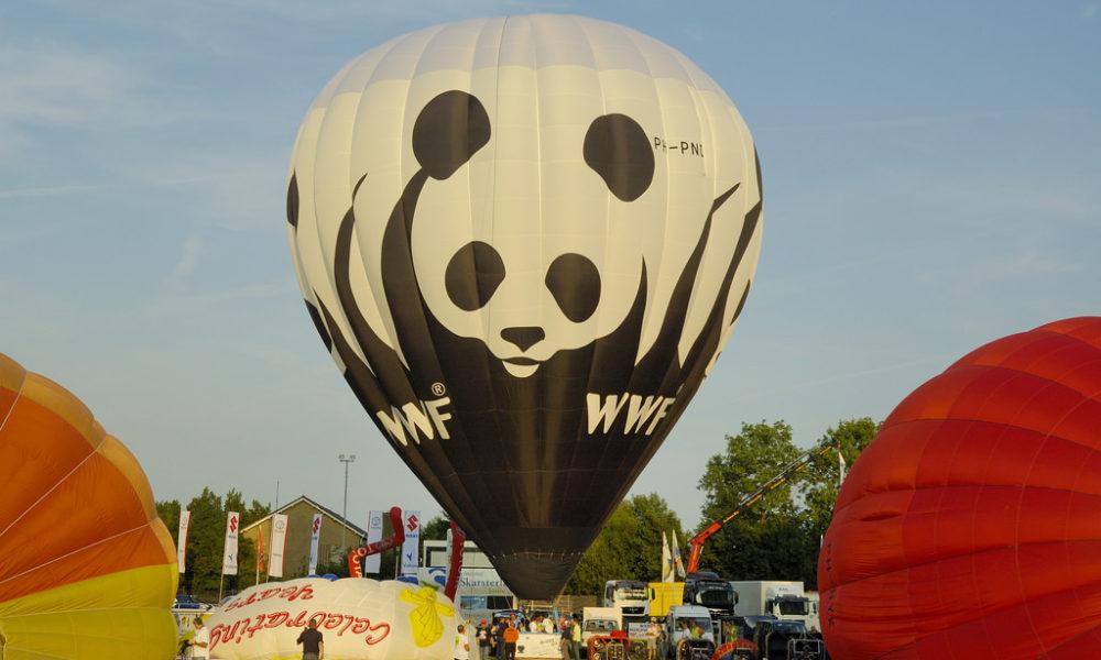 Nasce WWF Travel: l'obiettivo di un turismo naturalistico e responsabile