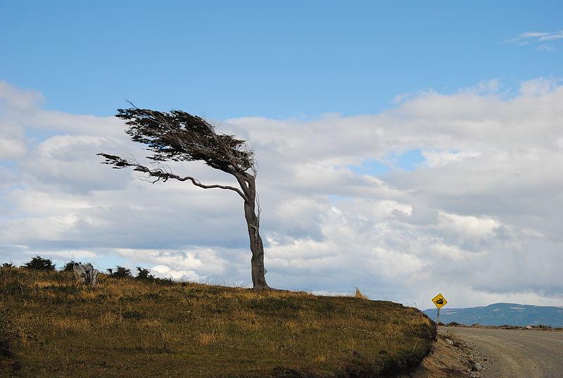 Maltempo, venti forti al sud e sulle isole