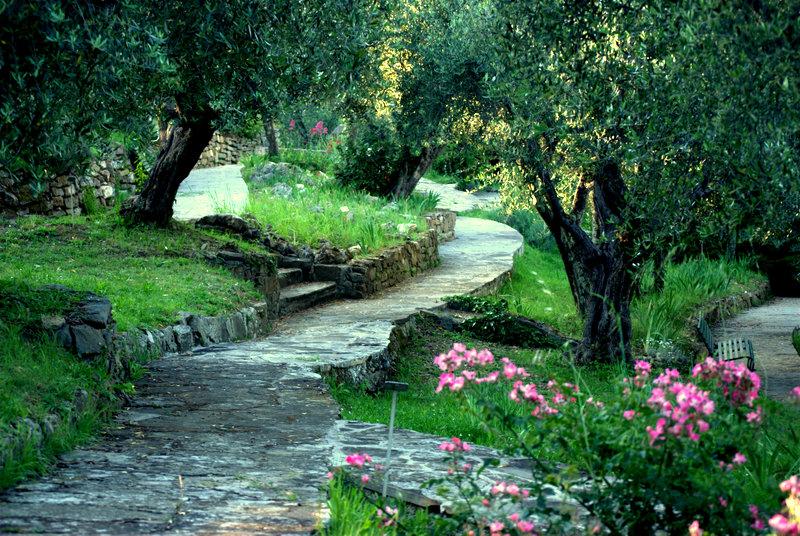 Giardino delliris lorto botanico dedicato al fiore simbolo di