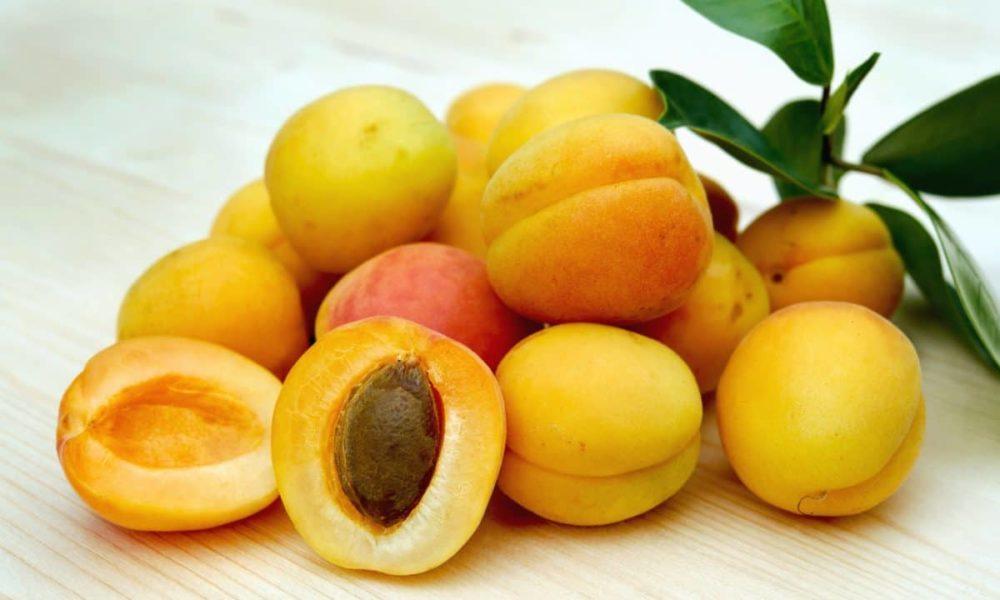 albicocca frutta trendy 2018