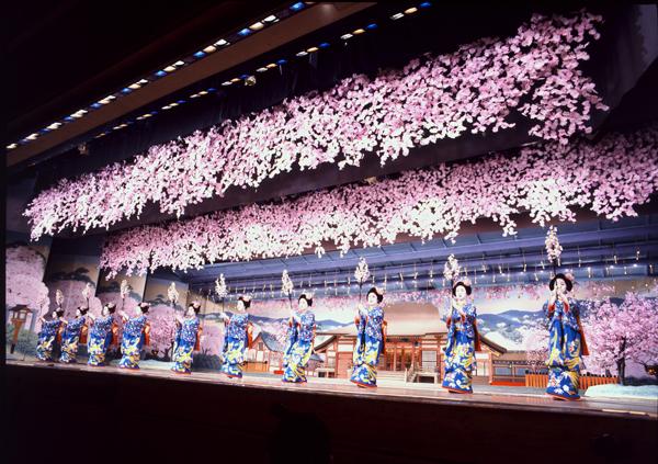 ciliegi e geisha