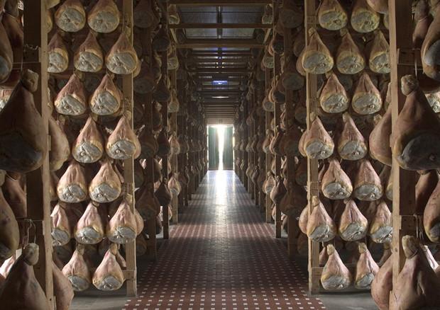 Parma prosciutto